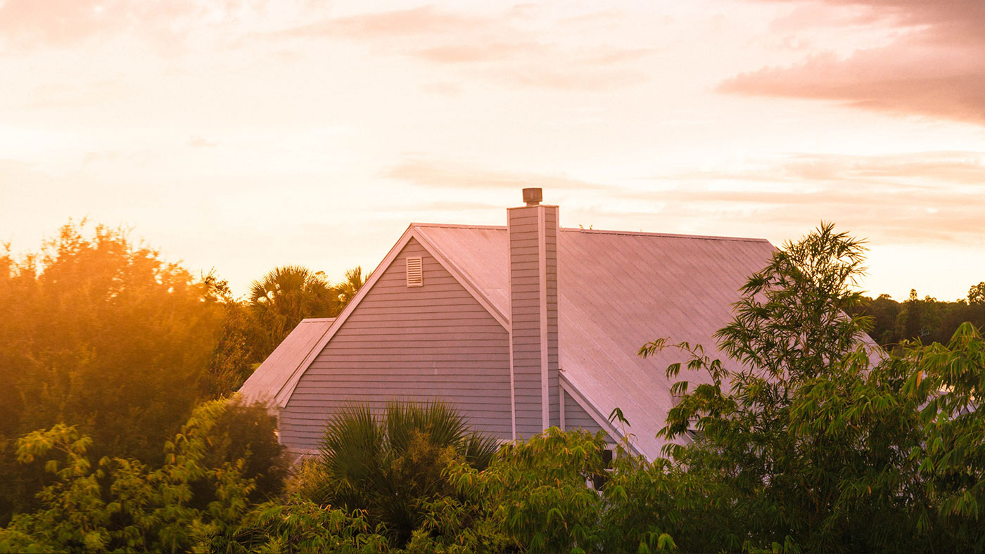 Does Your Roof Need Some TLC?